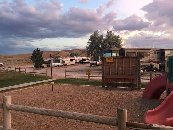 Wyoming koa